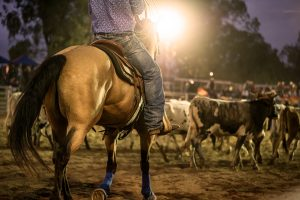 Night photography at Upper Hunter Show 2015 Rodeo.